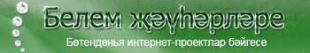 Белем җәүһәрләре-2011 II Бөтендөнья интернет-проектлар бәйгесе
